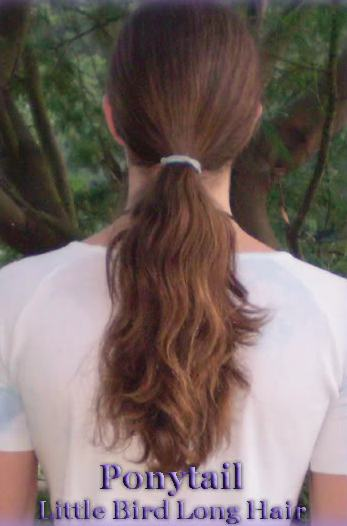 A ponytail hairstyle on a man with long hair